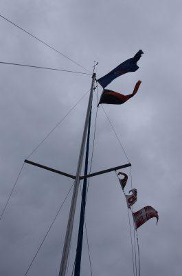 NG 2019 RC Flags
